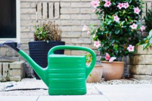Do you need to water artificial grass?