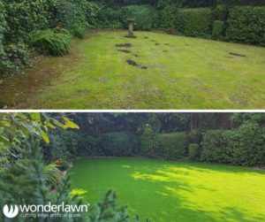Before and after artificial lawn installation