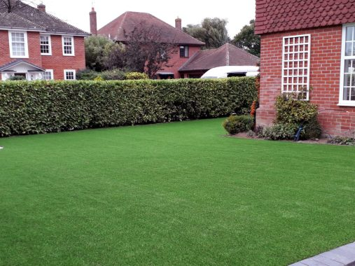 A green lawn all year round