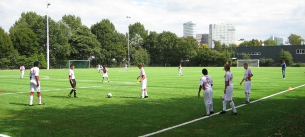 A Sporty Legacy for Artificial Grass
