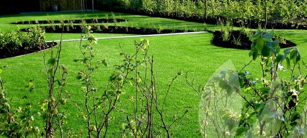 A Versatile Choice – Artificial Grass Glasgow