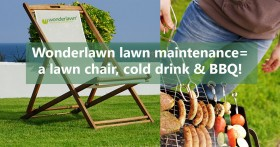 Wonderlawn artificial grass means no mowing