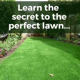 Get the perfect lawn