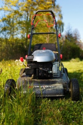 with artificial grass you don't need to mow the lawn